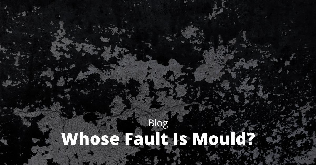 Whose Fault is Mould?