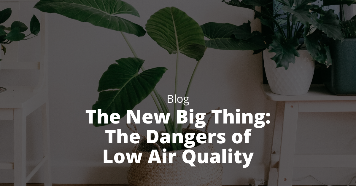 the dangers of low air quality