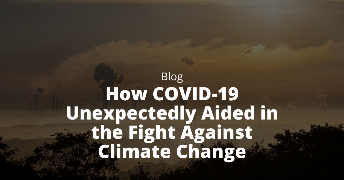 covid aided climate change