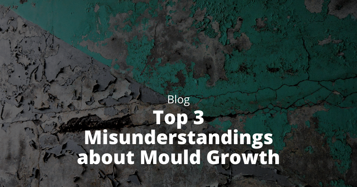 misunderstandings about mould
